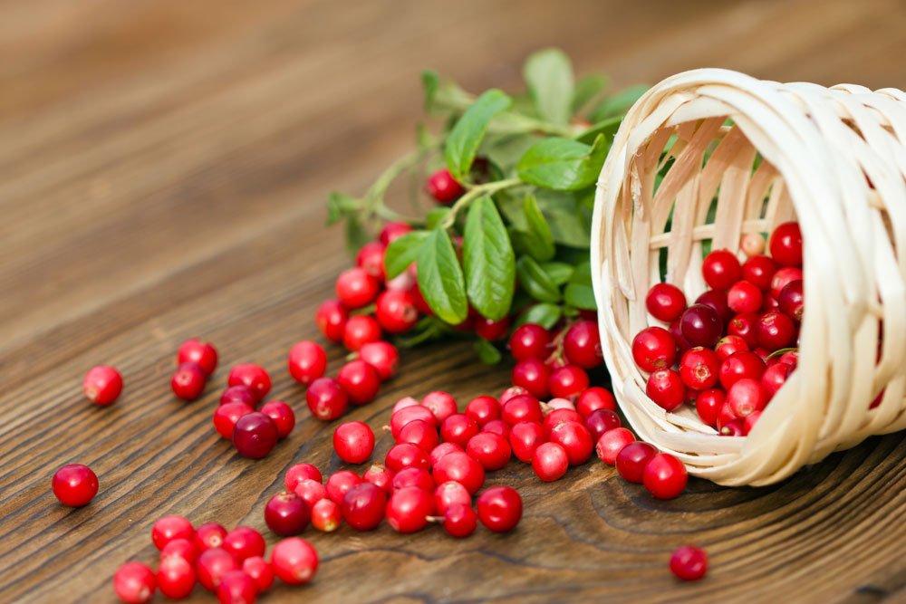 Blasenentzündung - Cranberrys