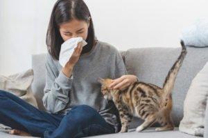 Tierhaarallergie